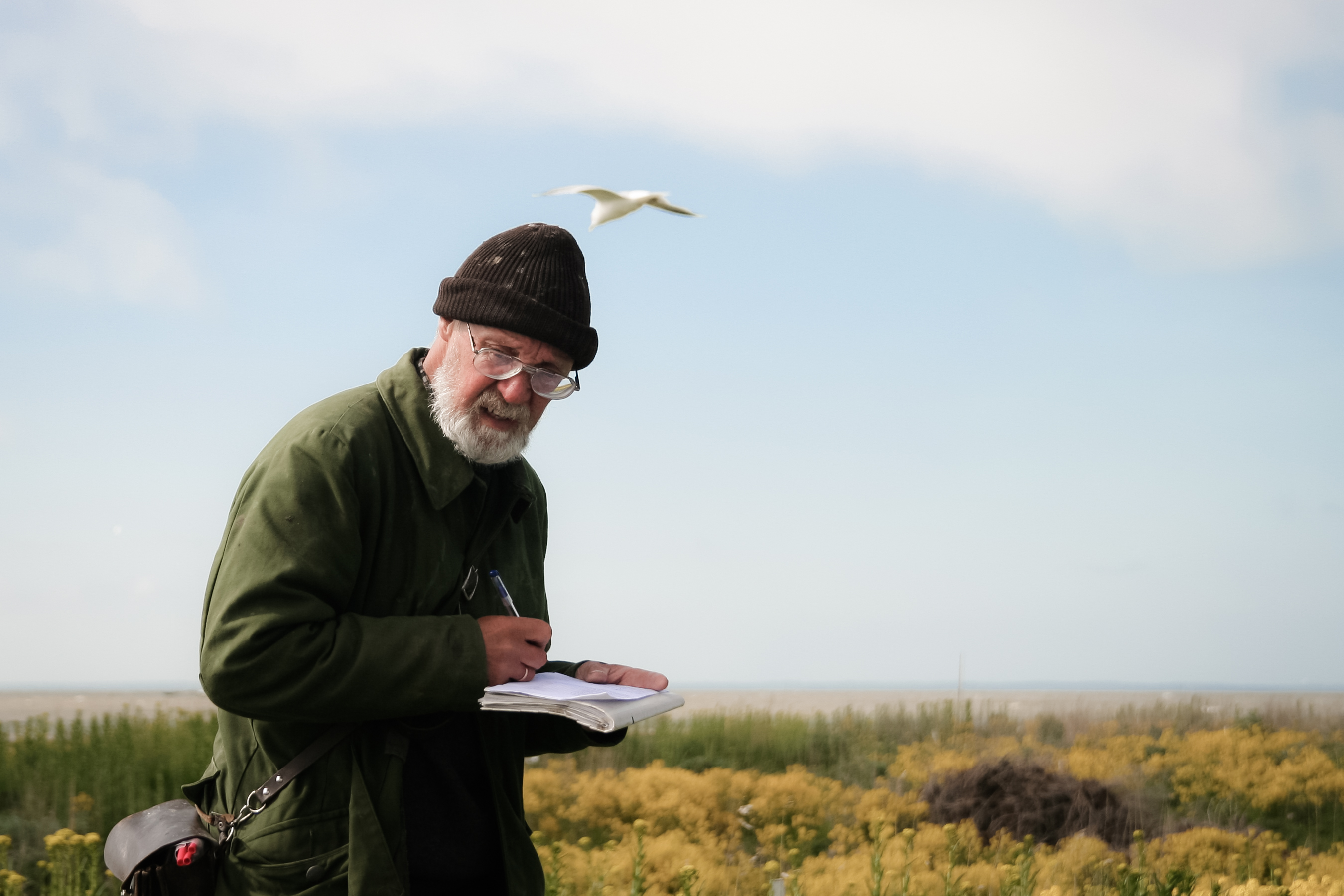Careers In Ornithology Becoming An Ornithologist Ornithology